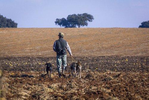 La caza es un activo importante en la oferta turística de esta comunidad autónoma. #shu#