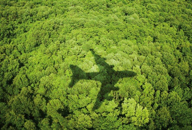 Las iniciativas verdes más innovadoras en la industria aérea