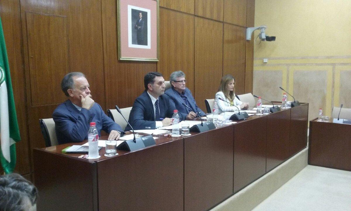 El consejero presentó en el Parlamento andaluz los presupuestos de su departamento para el próximo año.