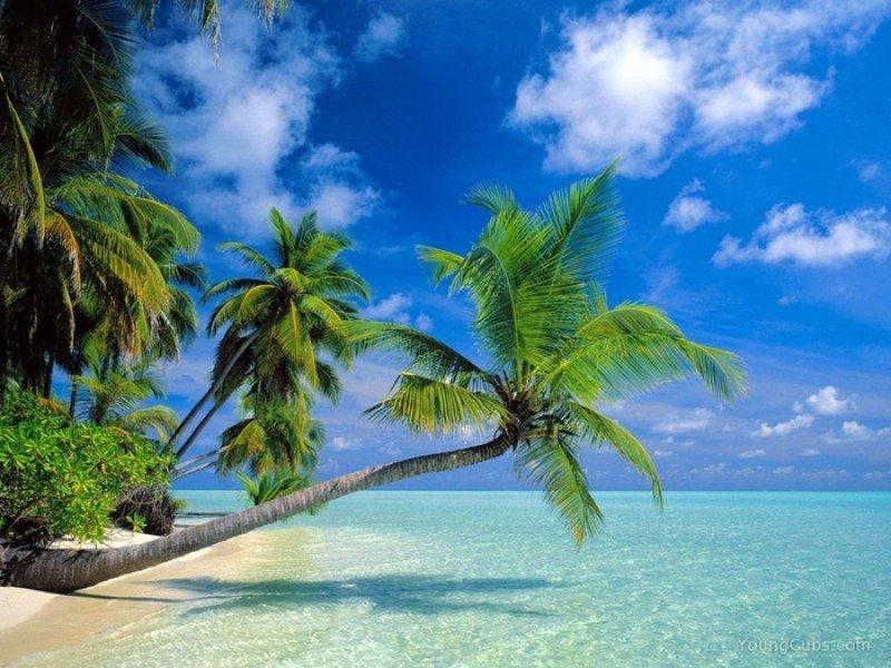 Riu compra dos islas en Maldivas para nuevos hoteles que sumarán 422 habitaciones