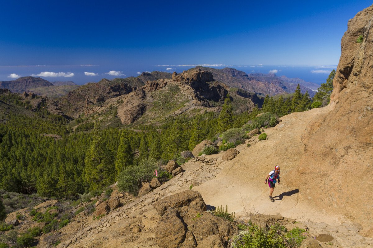 Los aspirantes tendrán que acreditar conocimientos del patrimonio natural y cultural de Canarias.