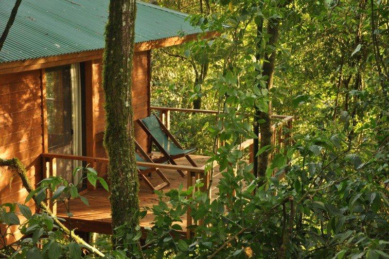 Hotel de selva premiado como mejor propuesta agroturística de Argentina.