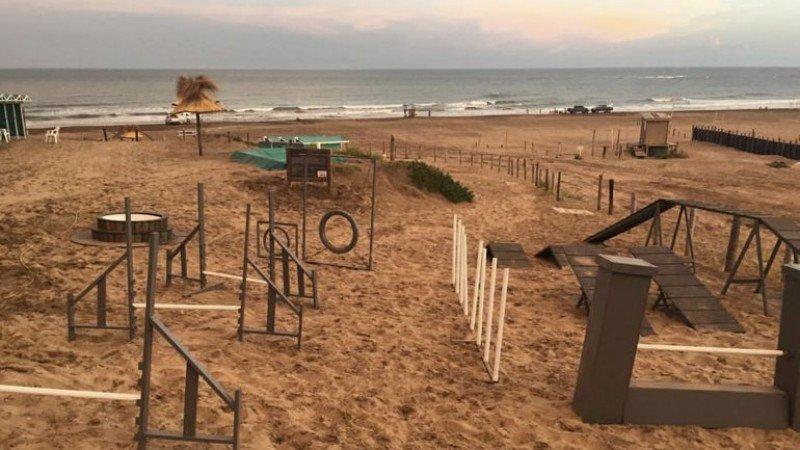 Mar del Plata tiene la primer playa canina de Argentina