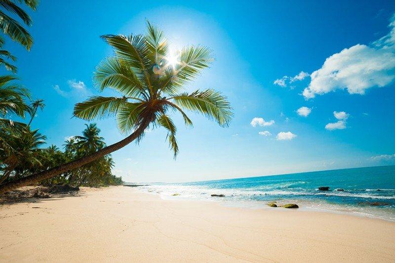 MSC Cruceros ofrecerá a sus pasajeros una isla privada en Las Bahamas