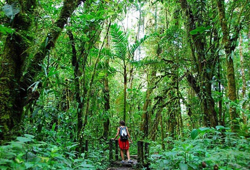 La diversidad del país lo hace ideal para el turismo de naturaleza.