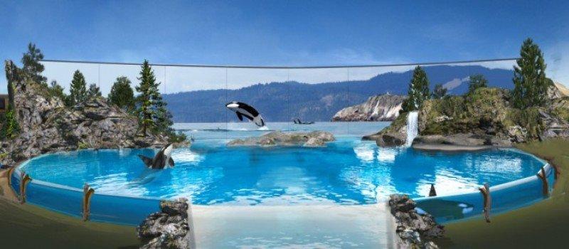 Así serán los habitats en los que serán exhibidas las orcas, según difundió SeaWorld.