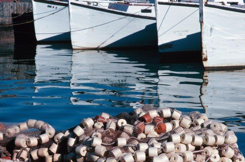 Baleares regula el turismo pesquero