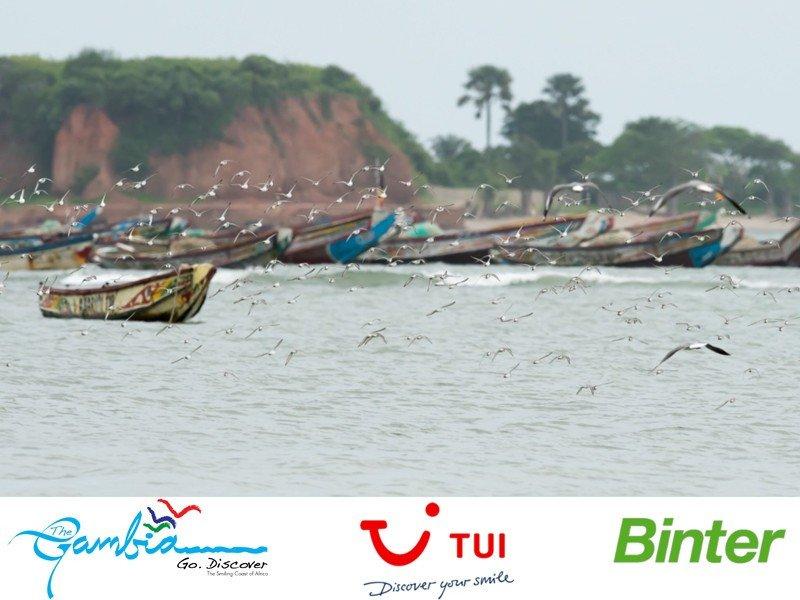 Webinar: Descubre Gambia