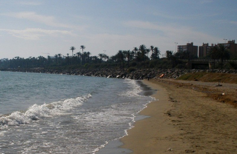 Los ciudadanos venían demandando una playa especial para llevar a sus mascotas.