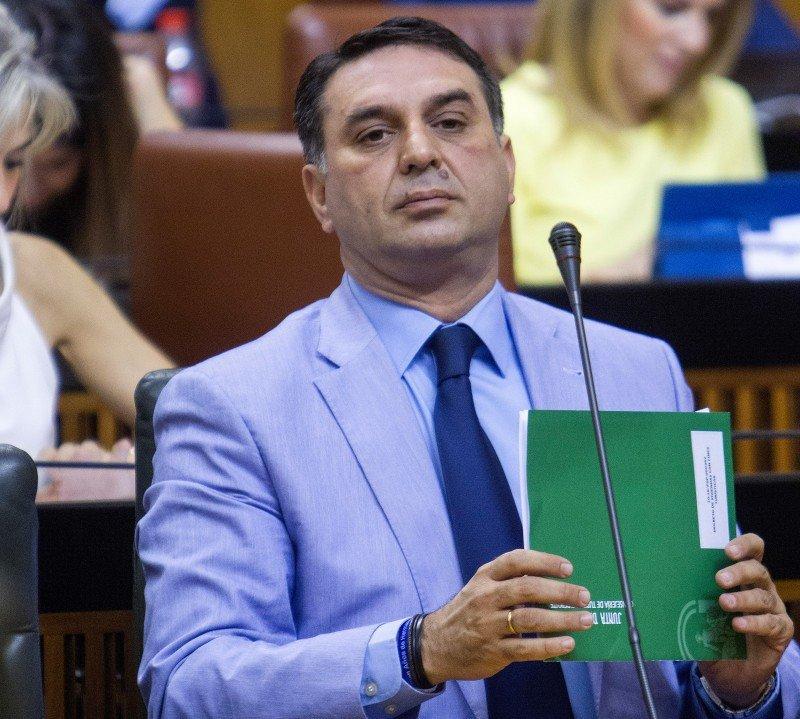 El consejero durante su intervención en el Parlamento Andaluz.