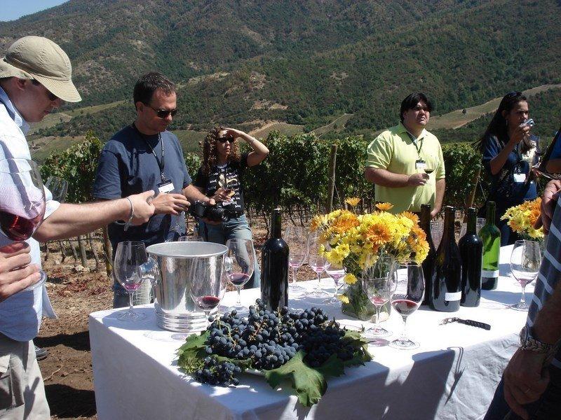 Visita a una bodega y degustación de vinos, un clásico chileno.