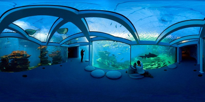 Palma Aquarium acoge el próximo 4 de octubre a partir de las 15.00 horas la III Jornada Re Think Hotel.