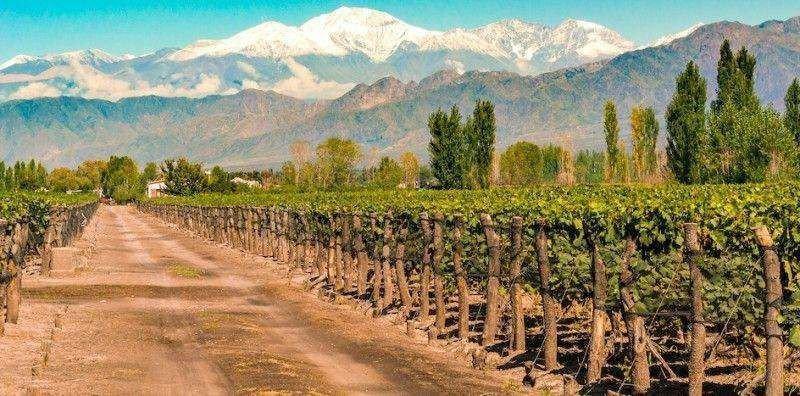Una de las propiedades en Argentina estará en Valle de Uco, dentro del complejo Tupungato Winelands.