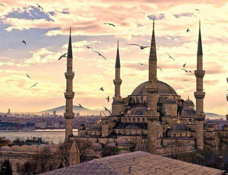 UFTAA hará su congreso en Estambul en solidaridad por la caída del destino