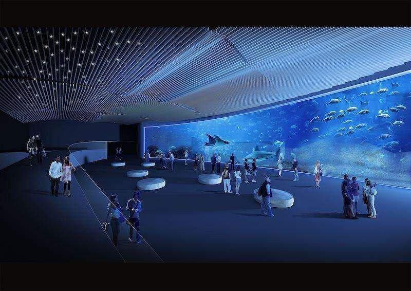 Imagen virtual de una de las áreas del Poema del Mar.