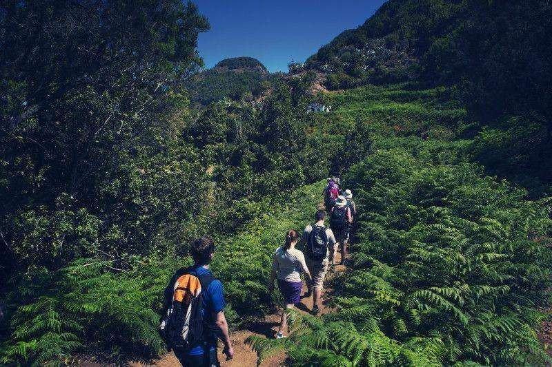 Canarias recibe más de un millón de turistas motivados por la práctica de un deporte.
