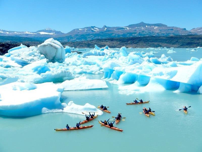 Patagonia es uno de los productos más demandadas por el segmento de Alta Gama en Argentina.