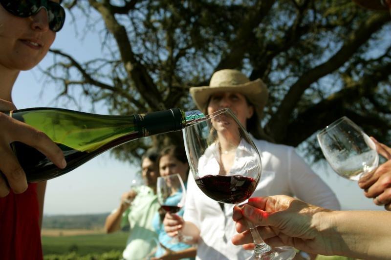 Webinar: Chile, gastronomía y vinos