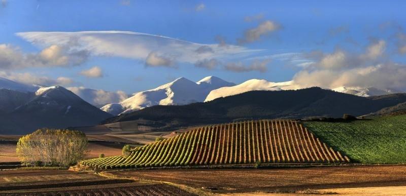 La Rioja, en la imagen, será escenario junto a Navarra y el País Vasco de un ruta que sigue los pasos de Hemingway.