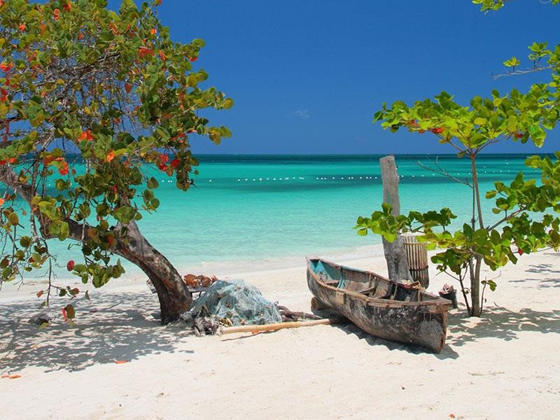 Webinar: Destino Jamaica