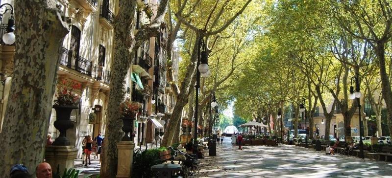 Las reservas del mercado francés a Baleares bajan por la demanda de Túnez (Foto: http://lamonomagazine.com).