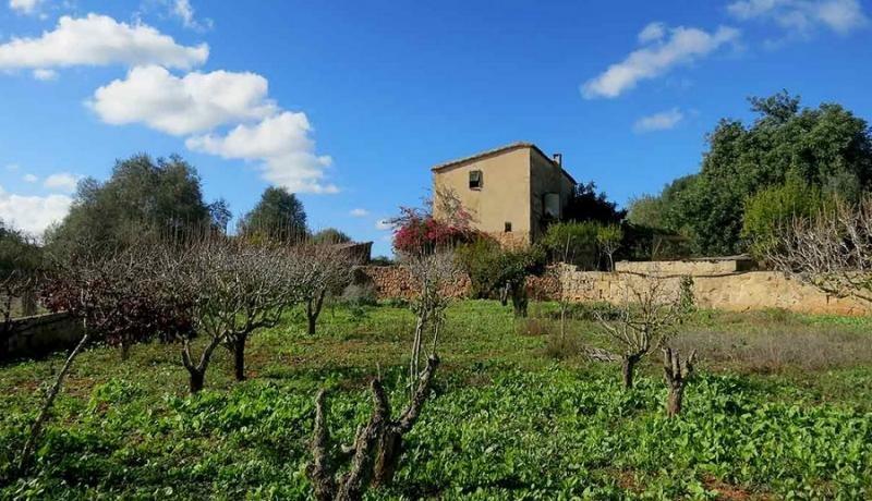 El alquiler turístico dispara en Mallorca las solicitudes para construir en suelo rústico