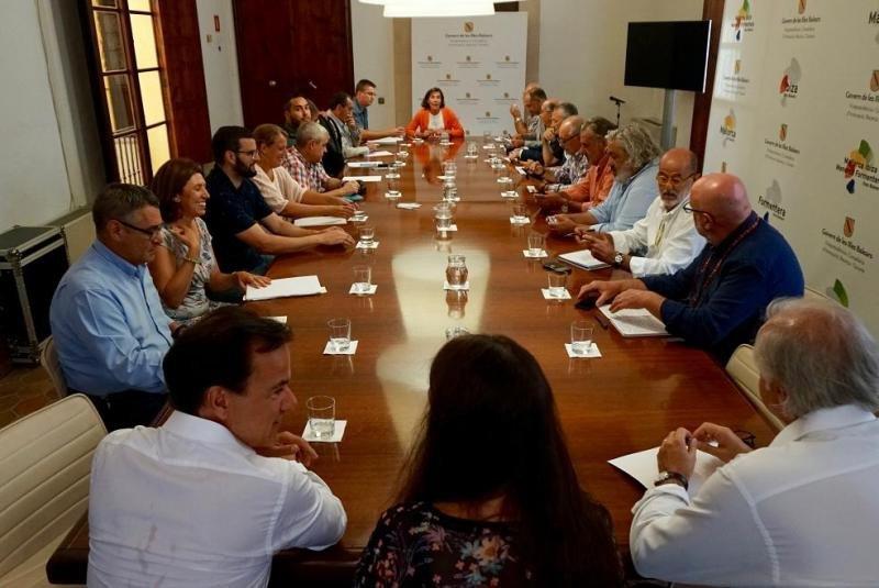 Imagen de la reunión mantenida por la directora general de Turismo de Baleares, Pilar Carbonell, y los representantes de 22 administraciones, instituciones y entidades del sector.