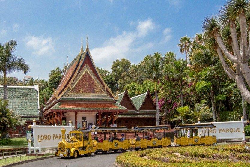 Desde su apertura, hace  45 años, Loro Parque ha recibido la visita de más de 47 millones de personas.