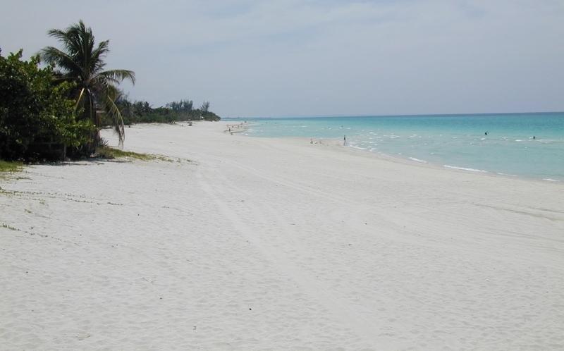Irma ha dejado en muchas playas más arena y dunas que antes.