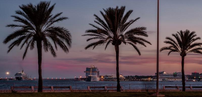 Cruceros en el Puerto de Palma. Foto: Palma365. Autor: Mario Eduardo.