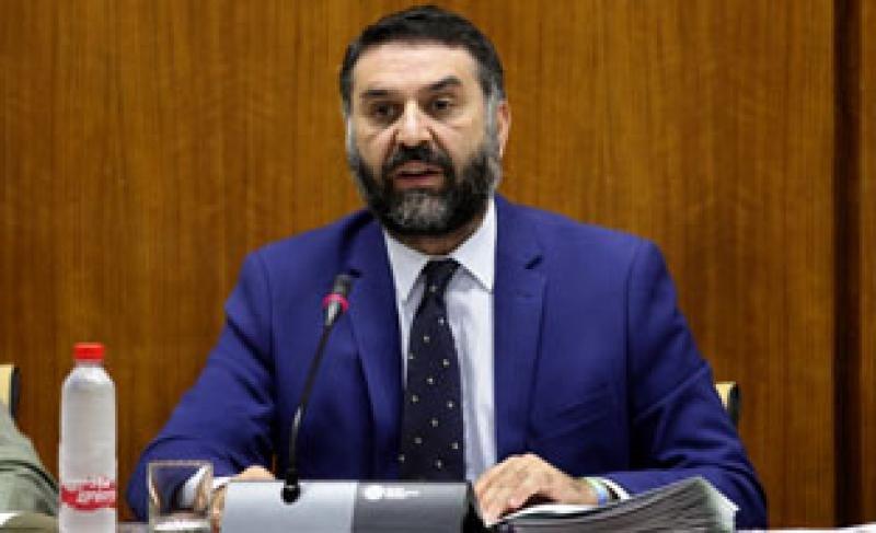 El consejero de Turismo, en un momento de su comparecencia. Foto: Junta de Andalucía