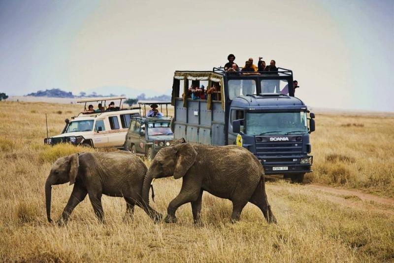 Los cuatro metros de altura de los camiones les dotan de máxima visibilidad y seguridad.