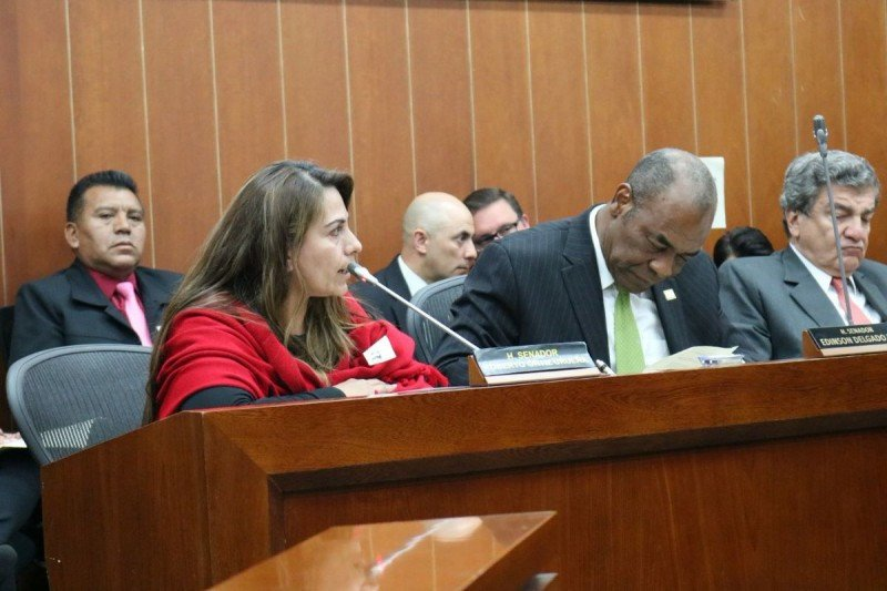 Representante de Acdac en audiencia pública realizada en Bogotá este martes.