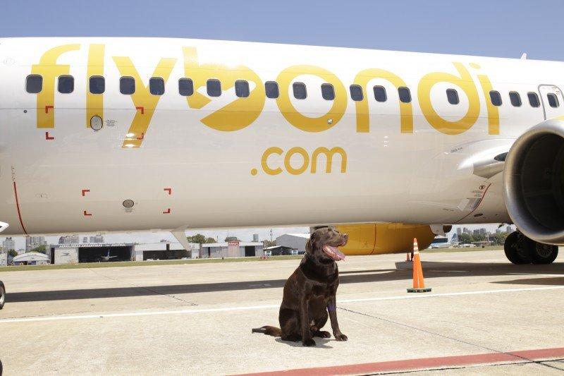 El primer avión de Flybondi ya está en Argentina