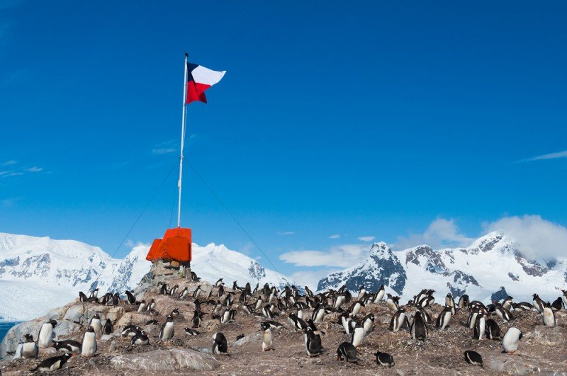 Antártica chilena espera cerca de 2000 chinos entre enero y marzo