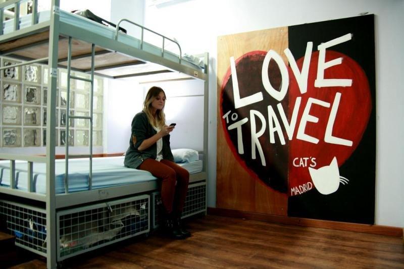 Su marca Cat's engloba la categoría de 'party hostel' con múltiples actividades, de momento con dos establecimientos, uno en Madrid y otro en Atenas de próxima apertura.