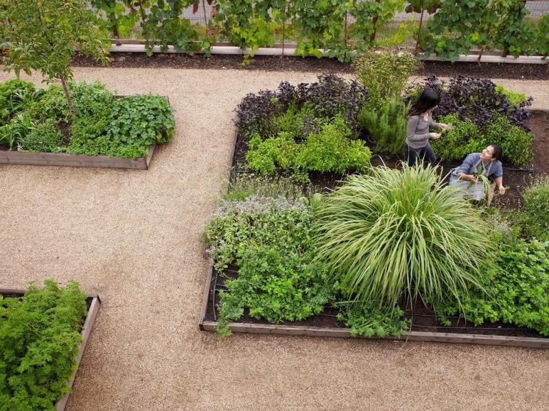 El hotel Bardessono, en California, planta hierbas aromáticas en su jardín orgánico por cada cliente que prefiera que no le hagan la habitación. Imagen: Bardessono Hotel and Spa.