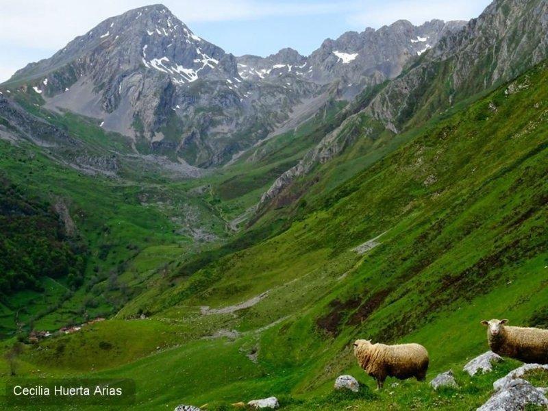La fotografía 'Momento apasionante', realizada en el Parque Natural de Las Ubiñas-La Mesa, Asturias, fue realizada por Cecilia Huertas.