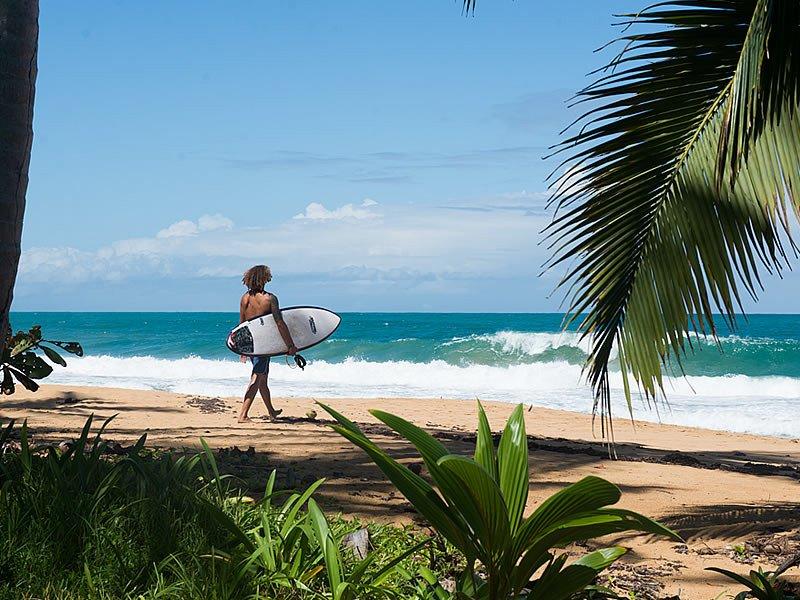 Webinar: Panamá, el paraíso escondido de Centroamérica