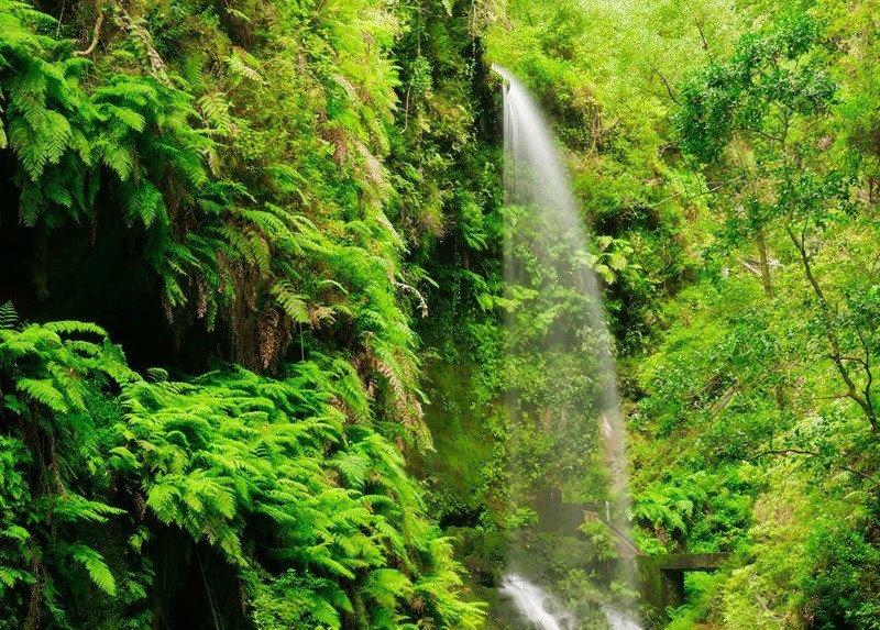 La Palma cuenta con paisajes espectaculares para el rodaje de producciones.