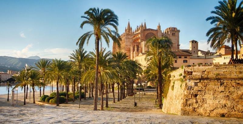 Fevitur estudia denunciar por prevaricación al Ayuntamiento de Palma