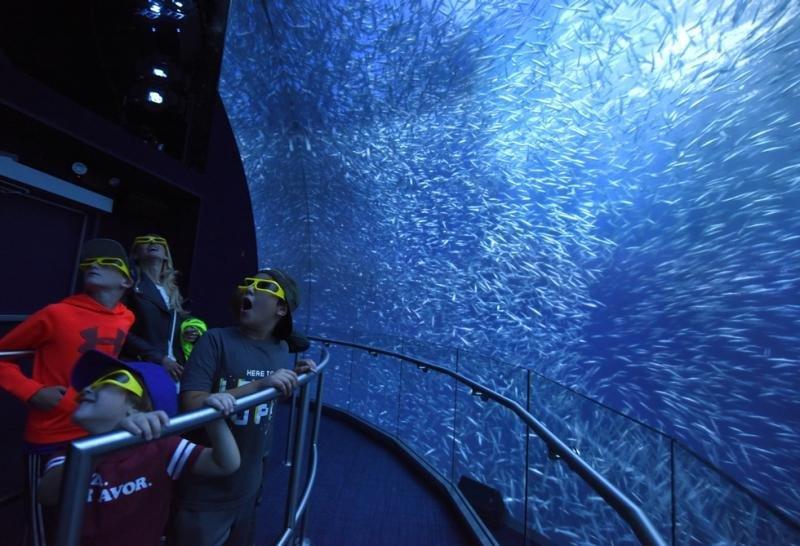 En el recorrido los visitantes pueden sentirse inmersos en el océano gracias a la tecnología 3D. Foto: Diane Bondareff.