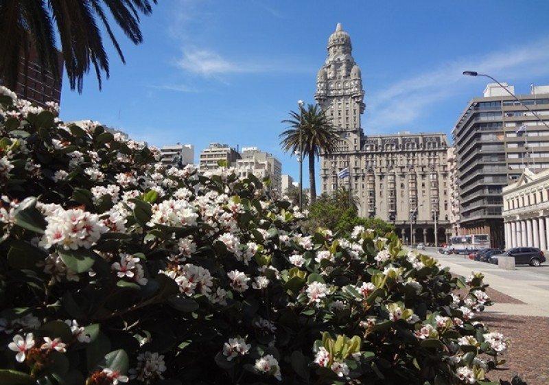 En Montevideo la baja del movimiento en el segundo trimestre ha sido sensible a nivel de la hotelería.
