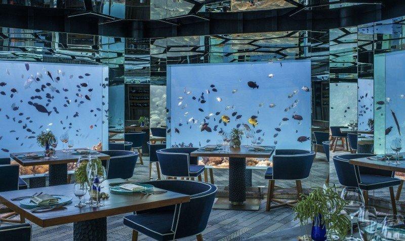 Un 60% de los turistas se hospedaría en un alojamiento bajo el mar. (Foto: Anantara Kihavah Maldives Villas / Booking.com)
