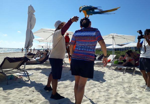 El estado de Quintana Roo asume la promoción del Caribe mexicano