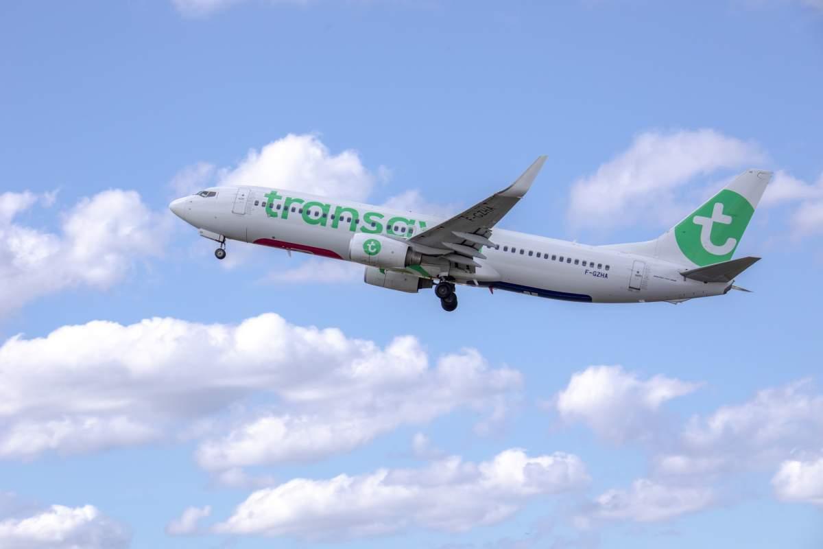 Resultado de imagen para Transavia