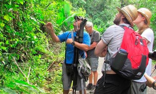 Flexibilización de seguros de viaje mejora condiciones para viajar a Costa Rica