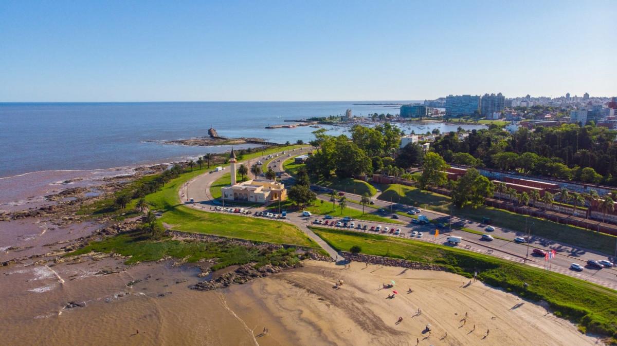 Una mirada distinta a Montevideo, apreciada por los visitantes