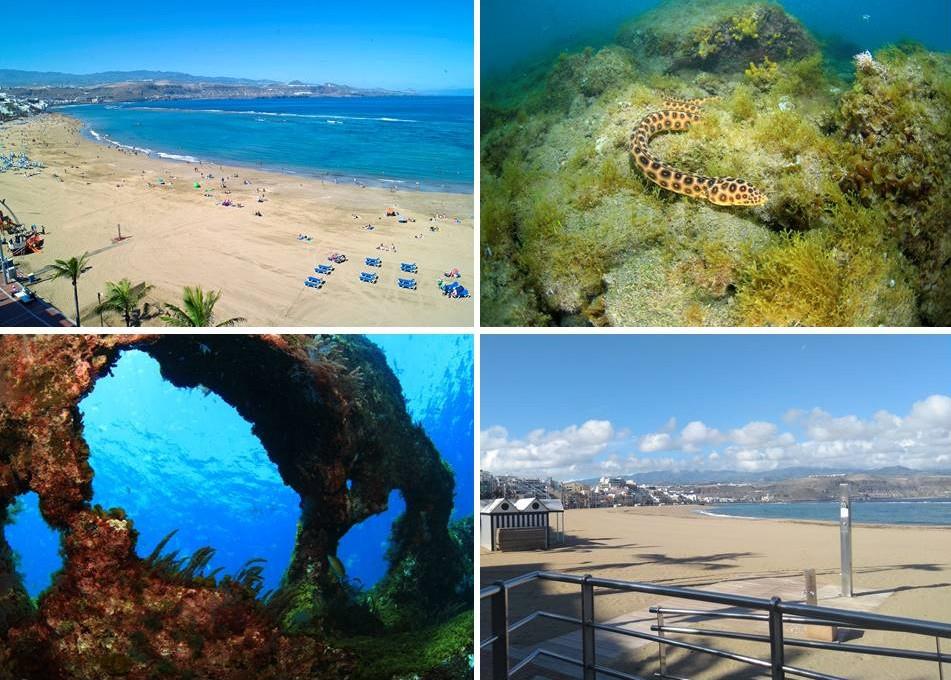 La Playa De Las Canteras Sometida A Estudio Ambiental Nota De Prensa En Hosteltur